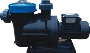 Endurance Swimming Pool Pump
